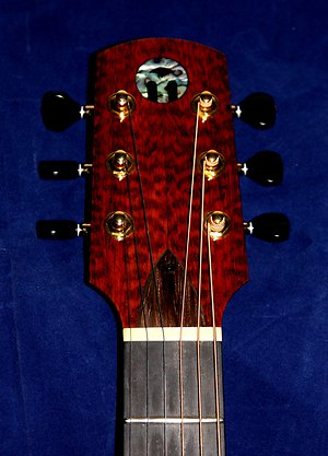 Head Plates. snakewood headstock