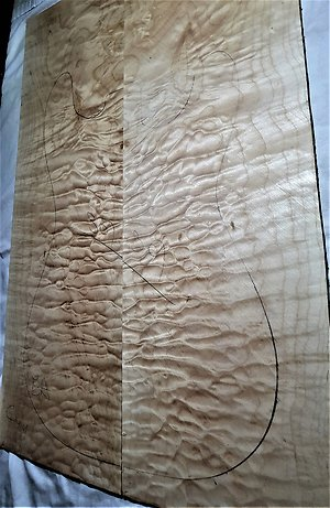 Quilted Maple Electric Guitar Drop Tops. quilt 301