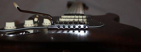 guitar necks electric guitar body blanks. Black Bedroom Furniture Sets. Home Design Ideas